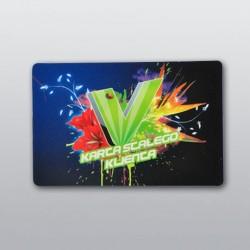 karty plastikowe 500 szt.