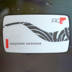 wizytówki-szronione-200 szt.